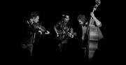 The Mantic Muddlers at Bowes Park Folk Club