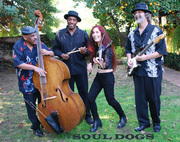 SOUL DOGS @ JOXER DALY'S in Culver City, Saturday, November 3rd!