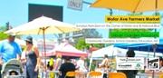 Motor Avenue Farmers' Market Every Sunday