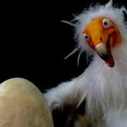 FESTIVAIS: Em Busca do Planalto Perdido   Mar-Marionetas 2019