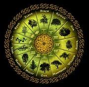 Celtic Tree Month: Vine Moon