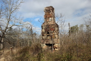 Abandoned homestead chimney