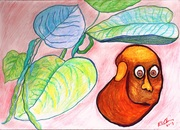 The Human Bean colored pencil drawing on paper RLO feb 2019