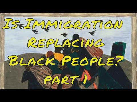 Is Immigration Replacing Black People? part 1 #blackhistorymonth