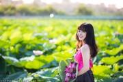 Chụp ảnh sen hồ tây đẹp nhất tại Hà Nội