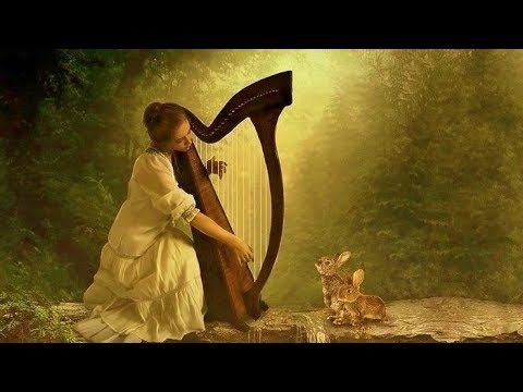Harp Meditation -  The Quiet Forest | Celtic Harp Relaxing
