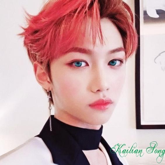 ✓ Seokmin Michael Song