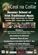 Irish Music Summer School 21st-25th July 2014