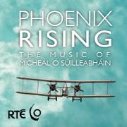 Phoenix Rising: The Music of Mícheál Ó Súilleabháin