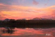 Lago di Ragogna (UD)