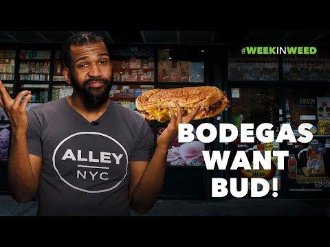 Bodegas Want Bud!
