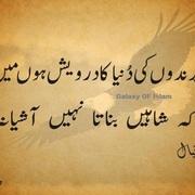 Waqar Younis Malik