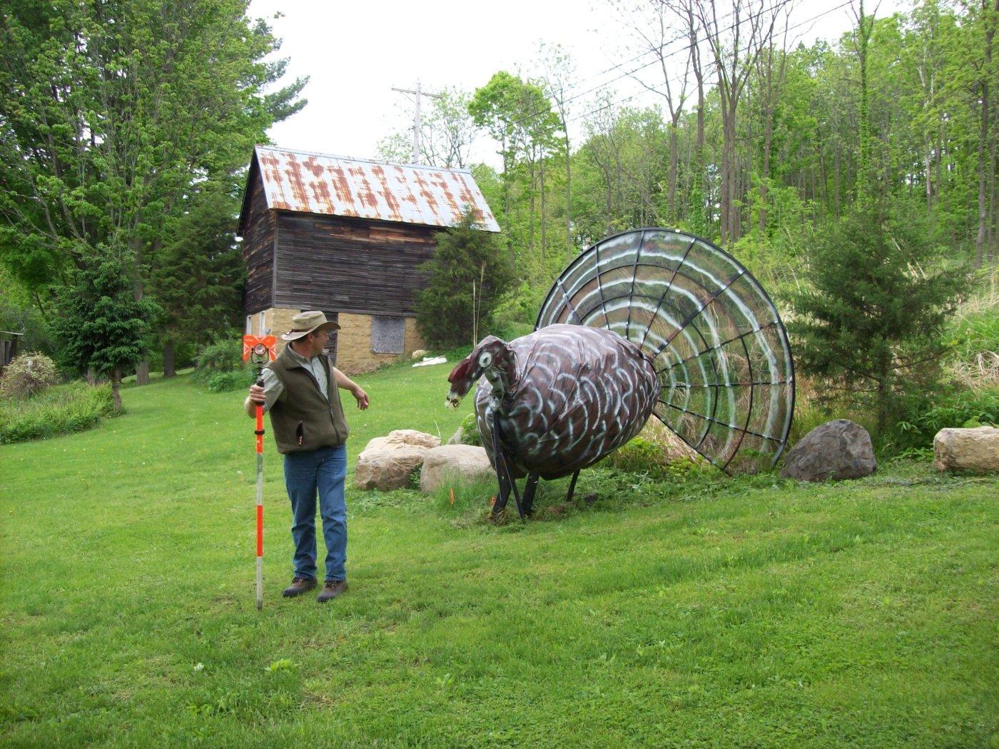 Wisconsin Turkeys (Turkesaurus Part 2)