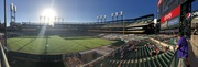 Outfield panorama