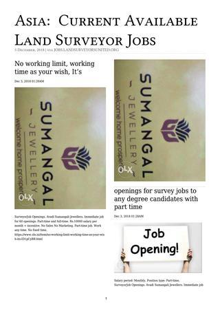 Asia Surveying Jobs