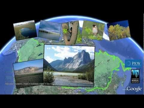 Tour Canada's Boreal Forest | Google Earth