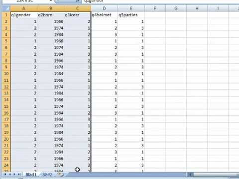 Excel 2007: Survey data, tables and exporting data to SPSS