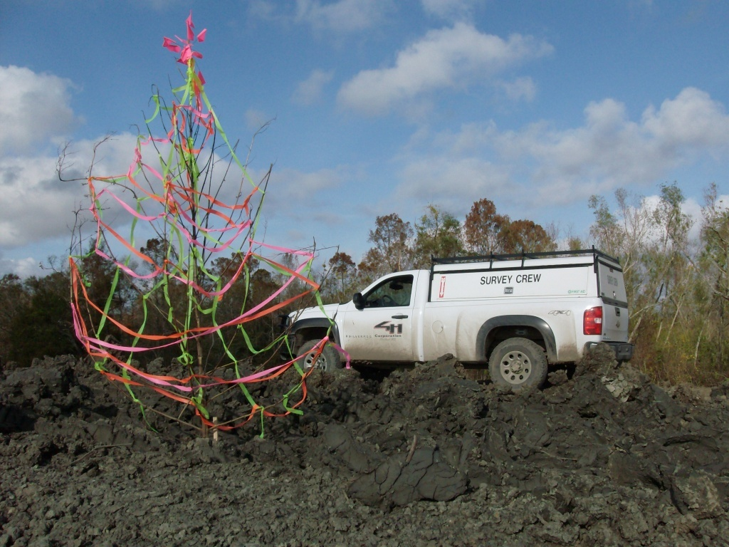christmas surveyor tree