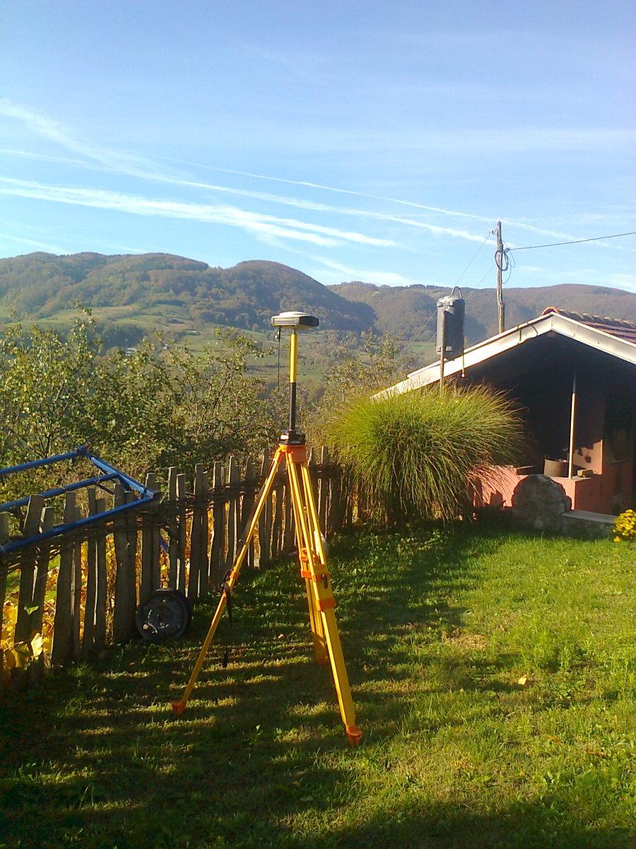 Basa in the yard