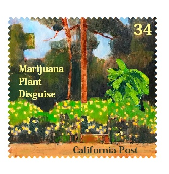 InmanMarijuana2