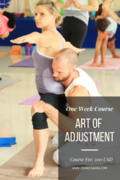 One Week Course of Art of Adjustment in Rishikesh India