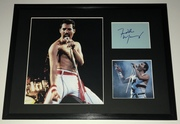 SOLD: Freddie Mercury / Queen