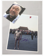 Ai Weiwei Art.