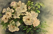 "14""x18"" White climber roses: Watercolour"