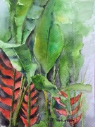 "12""x14"" Heliconias: Watercolour"