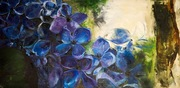 "24""x48"" Blue Hydrangea: Oil on Canvas"