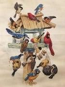 Bird Condo