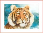 Tigerauge - ID
