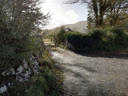 Lane leading to Carrowcullen, The Old Irish Farmhouse