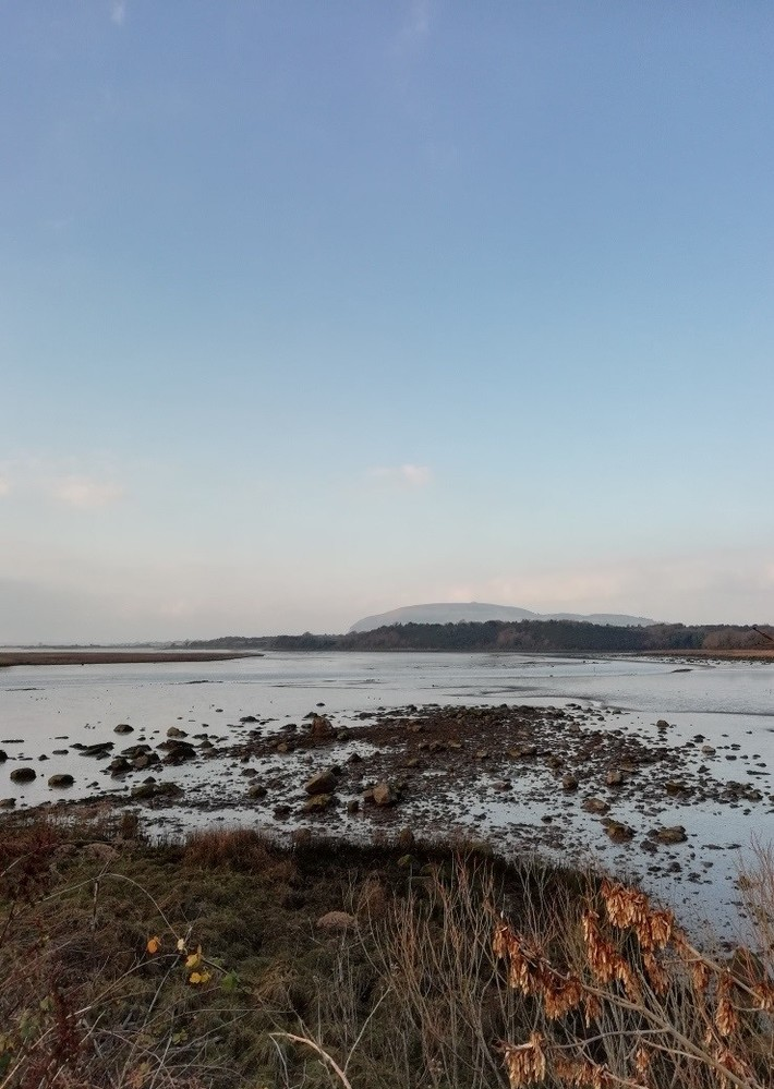 View of Knocknarea over Ballysadare Bay 23 November 2018 (3) IMG_20181123_142257_resized_20181123_030852086