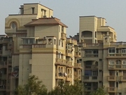THE MAGNIFICENT RASOOLPUR NAVADA URBAN VILLAGE IN SECTOR 62 NOIDA