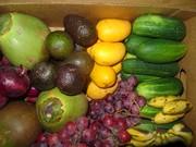 Wild Harvest & Super Foods Consortium