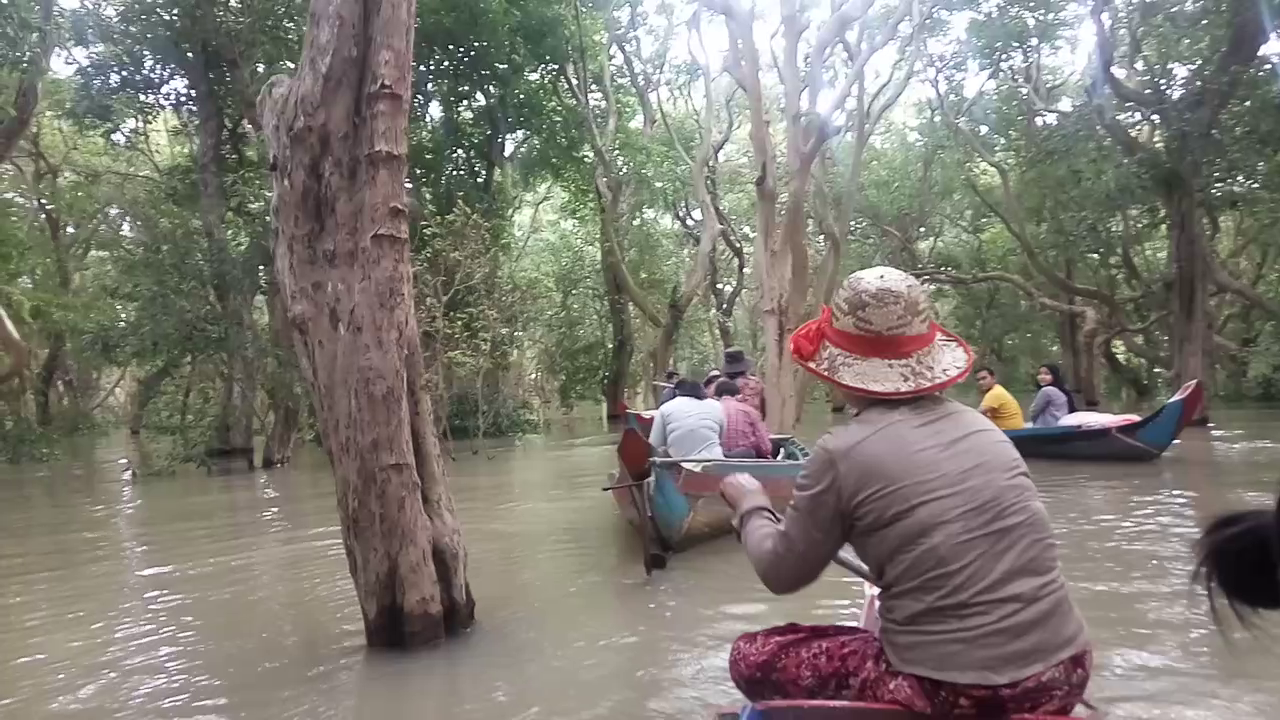 Kompong Phluk village and mangrove