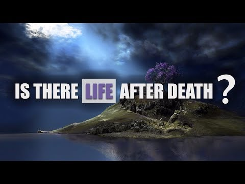 REAL life after death experiences +NDE's