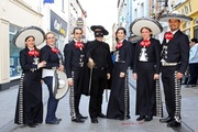 "¡ZorroFest! A Celebration of William Lamport of Wexford - ""The Irish Zorro"""