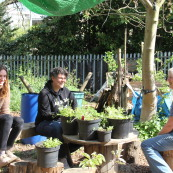Introduction To Permaculture SEPTEMBER 2014