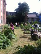 Grow a Gardener training course open evening