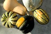 Made in Hackney Loves Smashing Pumpkins