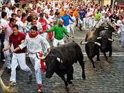 Running the Bulls: Pamplona,Spain