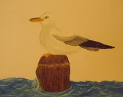 seagull:oil pastels