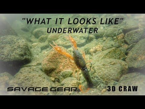 What it Looks Like | Neko Rigging Crawfish Plastics