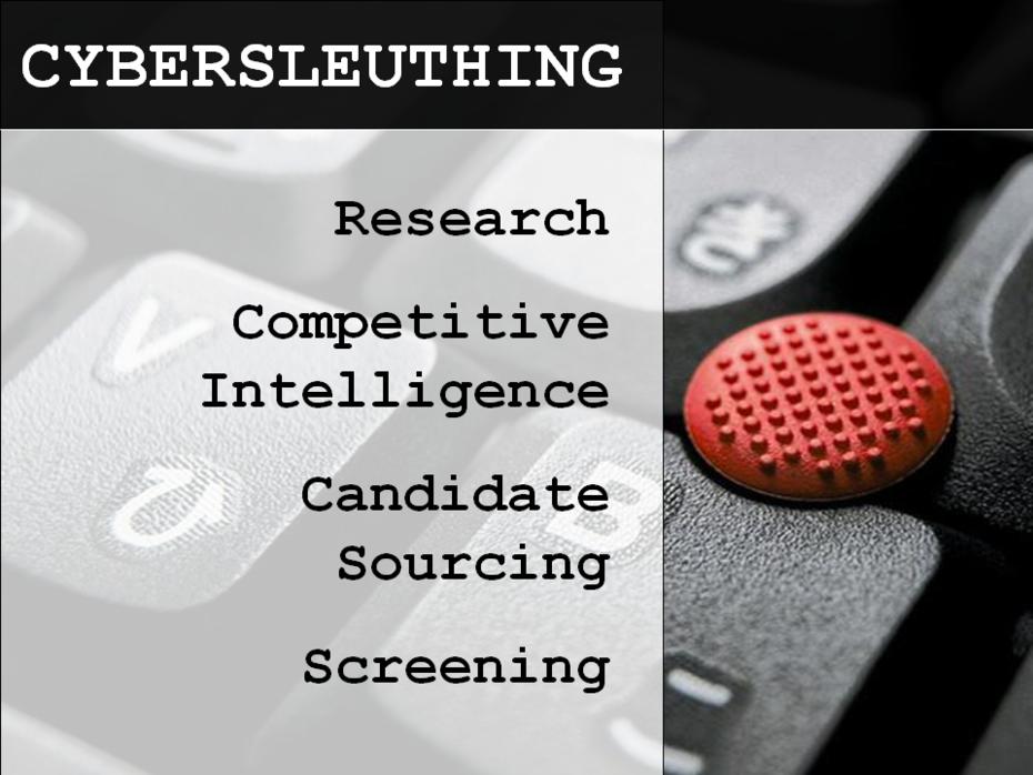 Cybersleuthing