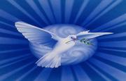 dove-usfmep2