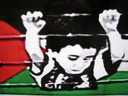 viva palestina 3