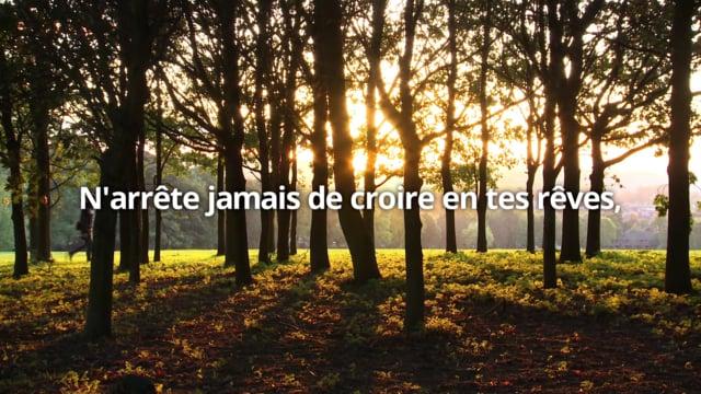 PROUVE-LEUR QU'ILS ONT TORT - Vidéo de Motivation - David Cloutier