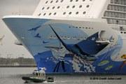 Cruise ship passengers injured